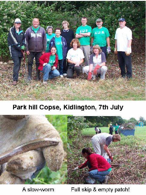 Park Hill Copse