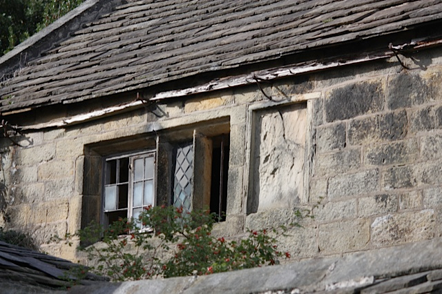 Mullion Windows