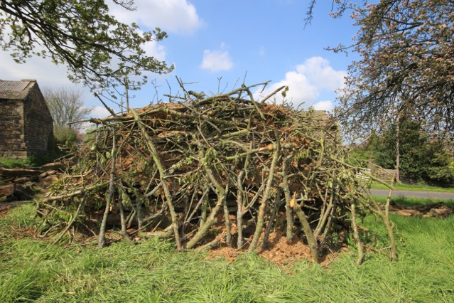 Newly constructed habitat pile