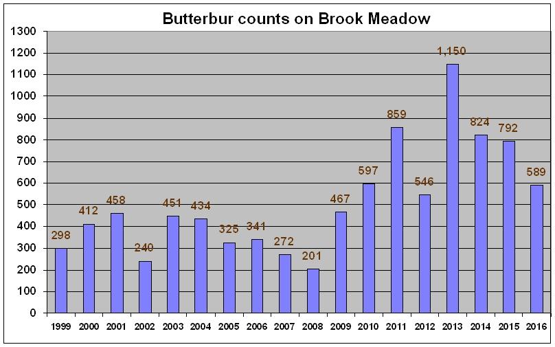 025b-butterbur-counts-2016