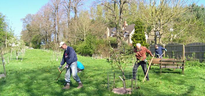 orchard-scything-20140416-w