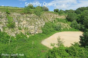 IMG_2609-Salterley-Quarry