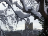 conisbrough-castle-jv