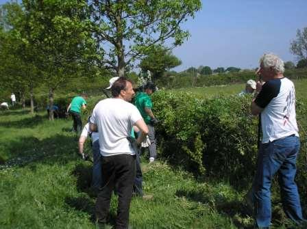 HGG members working on the hedge