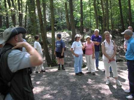 Group in the wood listening to explanation of tree cover