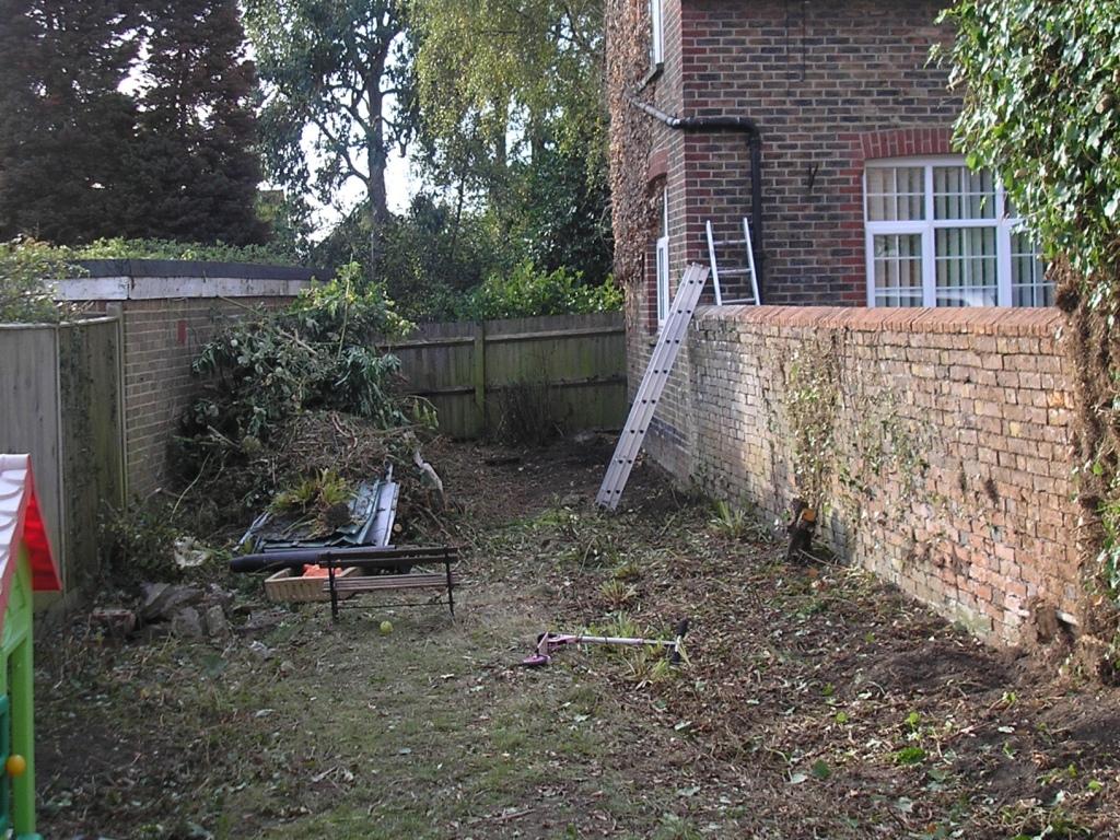 the garden at present