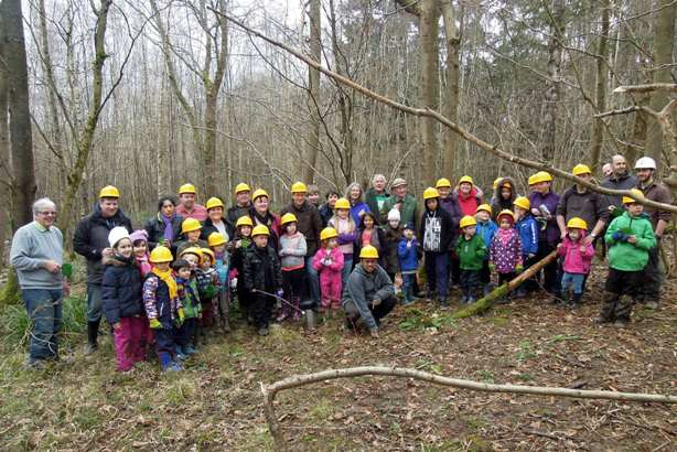 Warnham Nature Reserve Tree Felling Horsham Green Gym Family