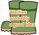 wellies a good idea