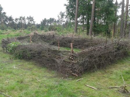 a nesting 'pond'