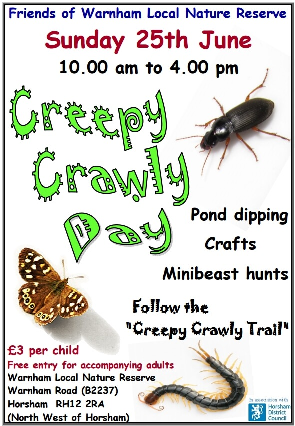 Creepy Crawly Day poster