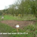 Seeds sown 06-04-2014