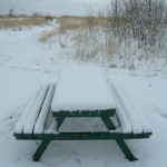 Bench snowed up 23-03-2013