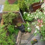Yard view 28-05-2013