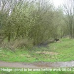 Dead Hedge - pond to be area before work 06-04-2014