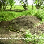 Hibernacula Built 11-05-2014 #