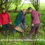 Hibernacula builing 10-05-2014
