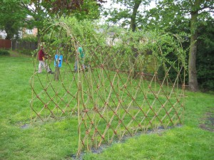 willow arch after