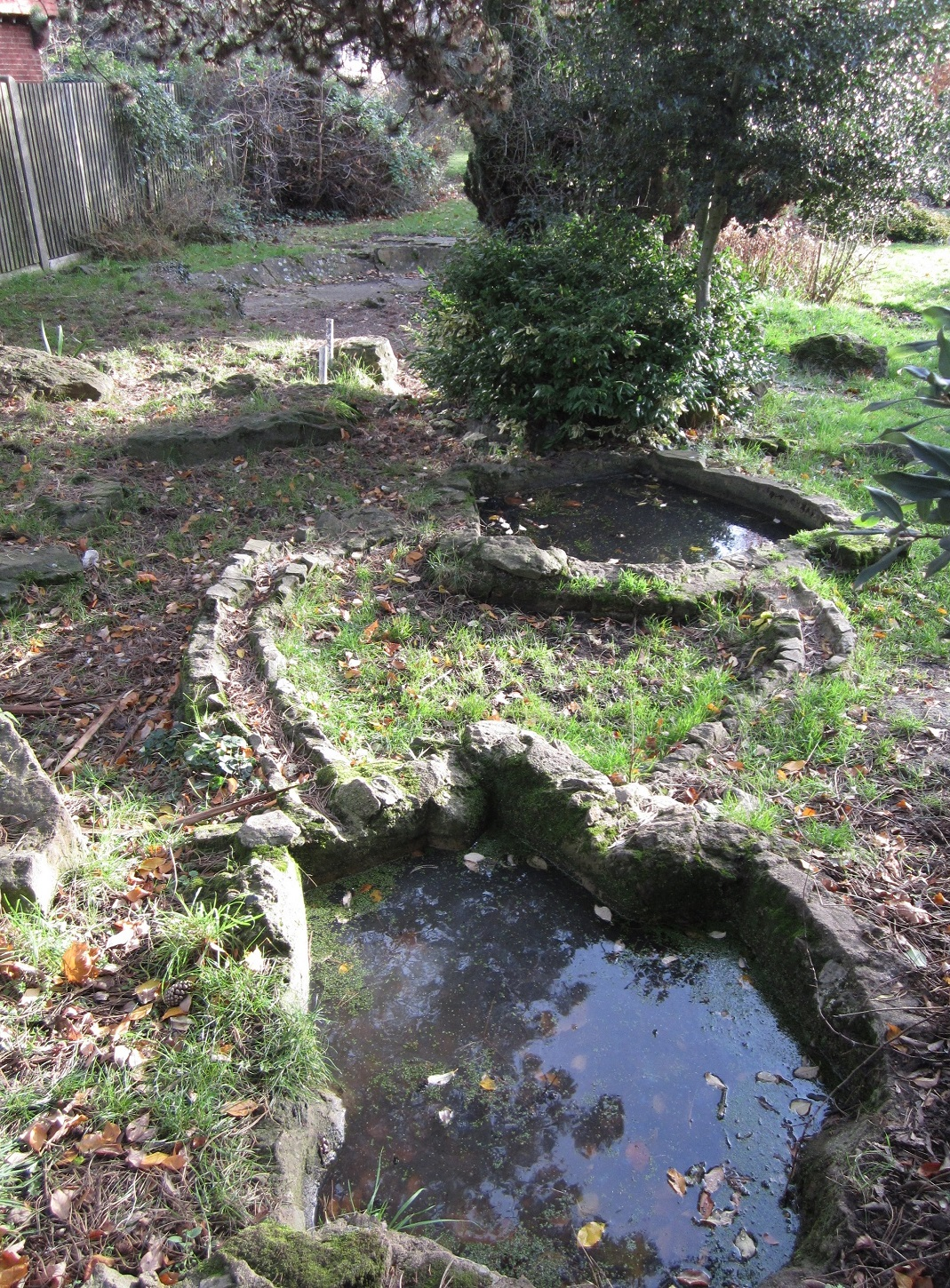 Before and after penge green gym penge in bloom for Small pond base