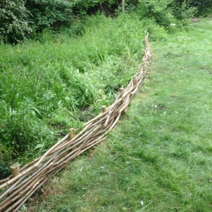 Completed Fencing CEB