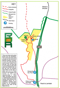 map of Roots site 13
