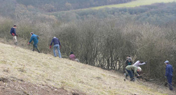 Volunteers working on Fiddle Hill