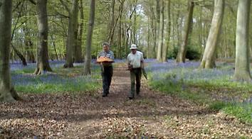 Flowercroft Woods