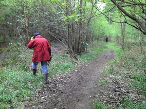 11/5/2013 Ibsden Wood