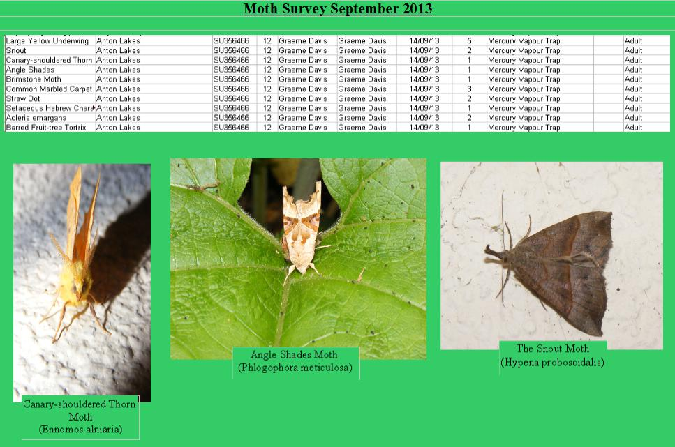 anton-lakes-moth-sept-2013