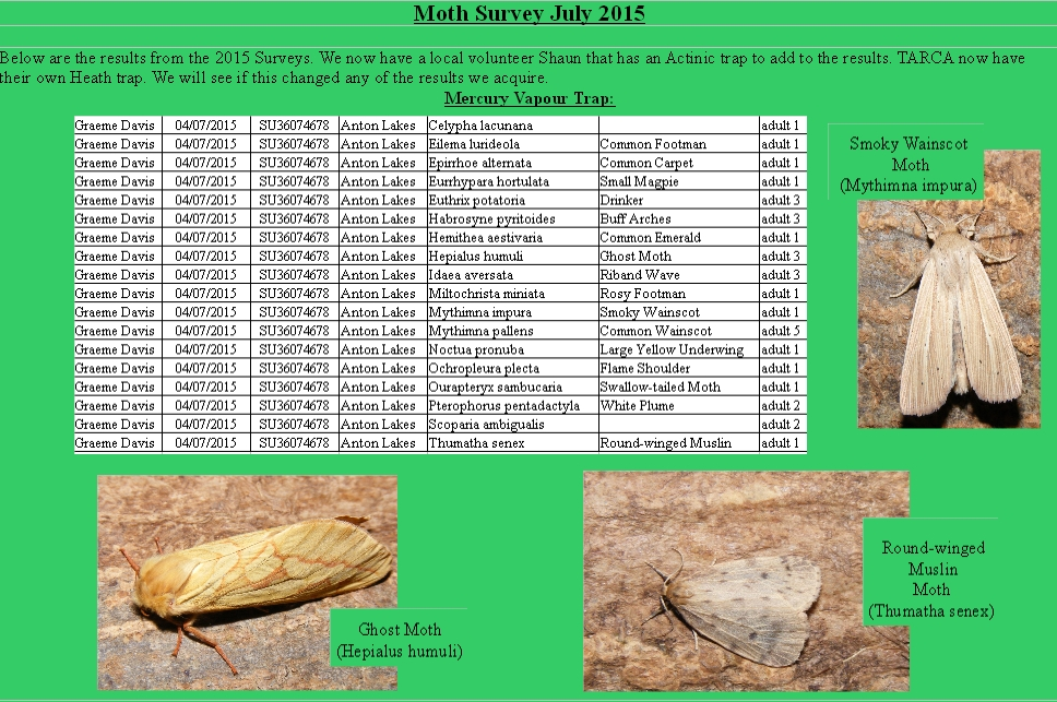 July Moth survey Anton 2015.Mercury