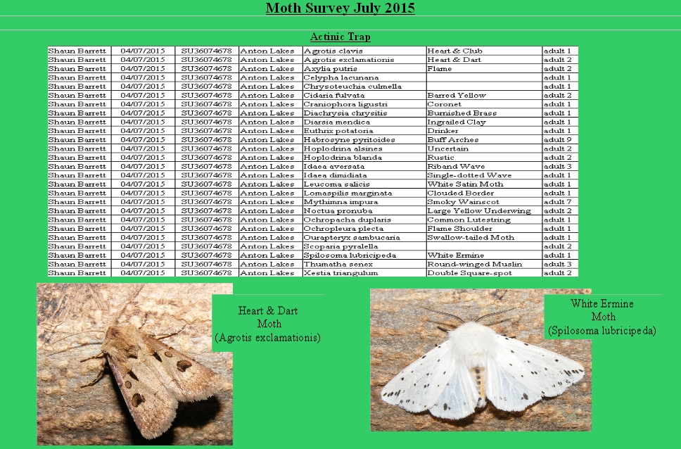 July Moth trap result Anton 2015.actinic
