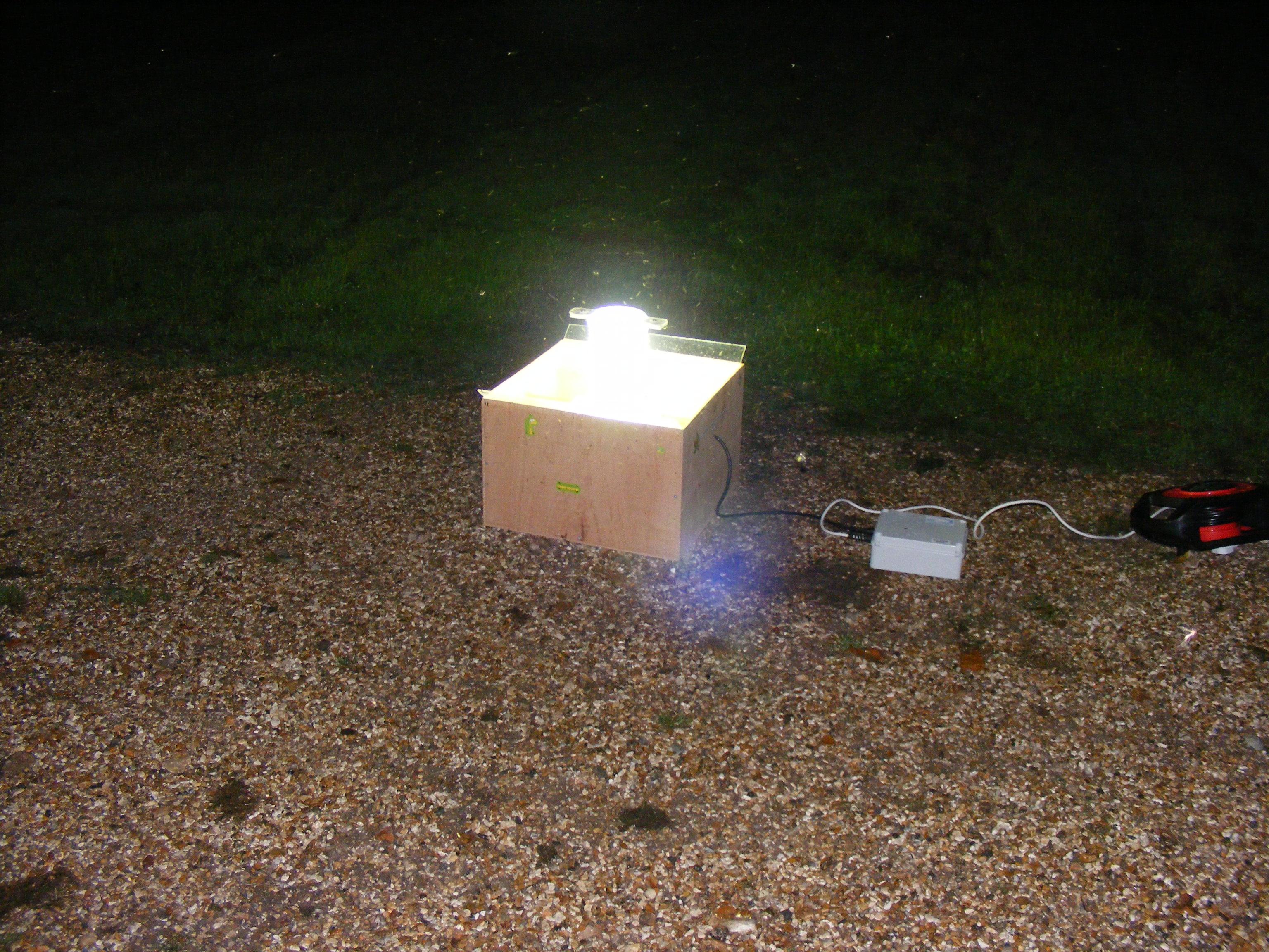 moth-trap-22-8-15-vitacressabbotts-ann