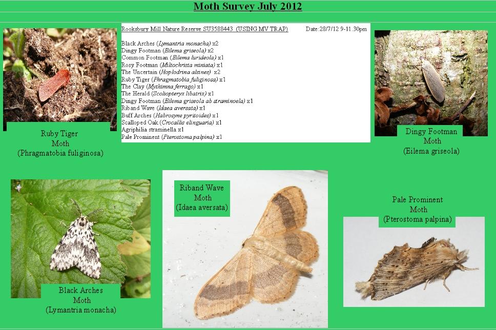 Moth results2012