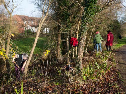 Planting Bluebells in the 'Garden by the Bridge' (Sally, Christine, Pavla and Margaret)