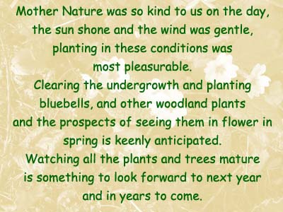 Some words by Margaret, one of our newest volunteers.