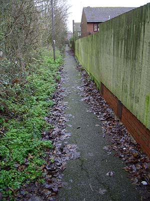 Before:  The heavily overgrown path which leads from the High Street to the northern end of Leafield Rise.
