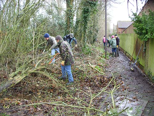 Clearing a stretch of overgrown vegetation from a prominent corner along the hedge