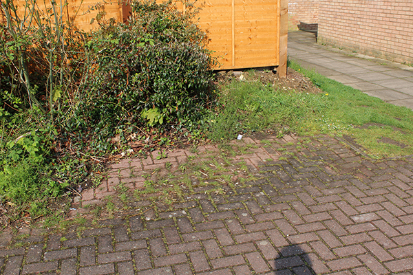 Before – the untidy footpath entrance from Capian Walk