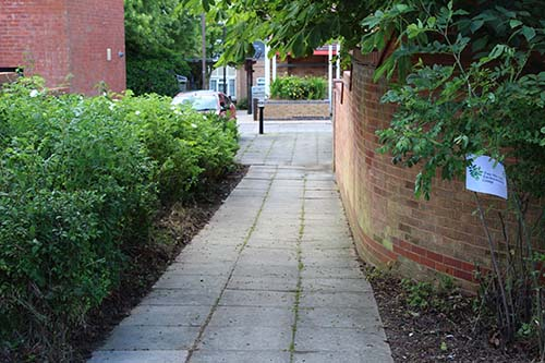 The results - a tidied up shrub bed and a cleaned up footpath